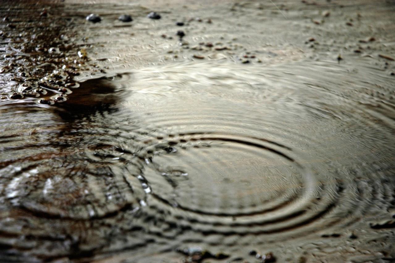 Kwaśne deszcze jako skutek degradacji środowiska